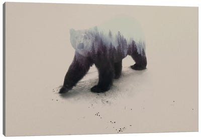 Polar Bear Canvas Print #ALE8