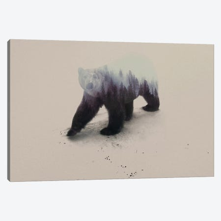 Polar Bear Canvas Print #ALE8} by Andreas Lie Canvas Print