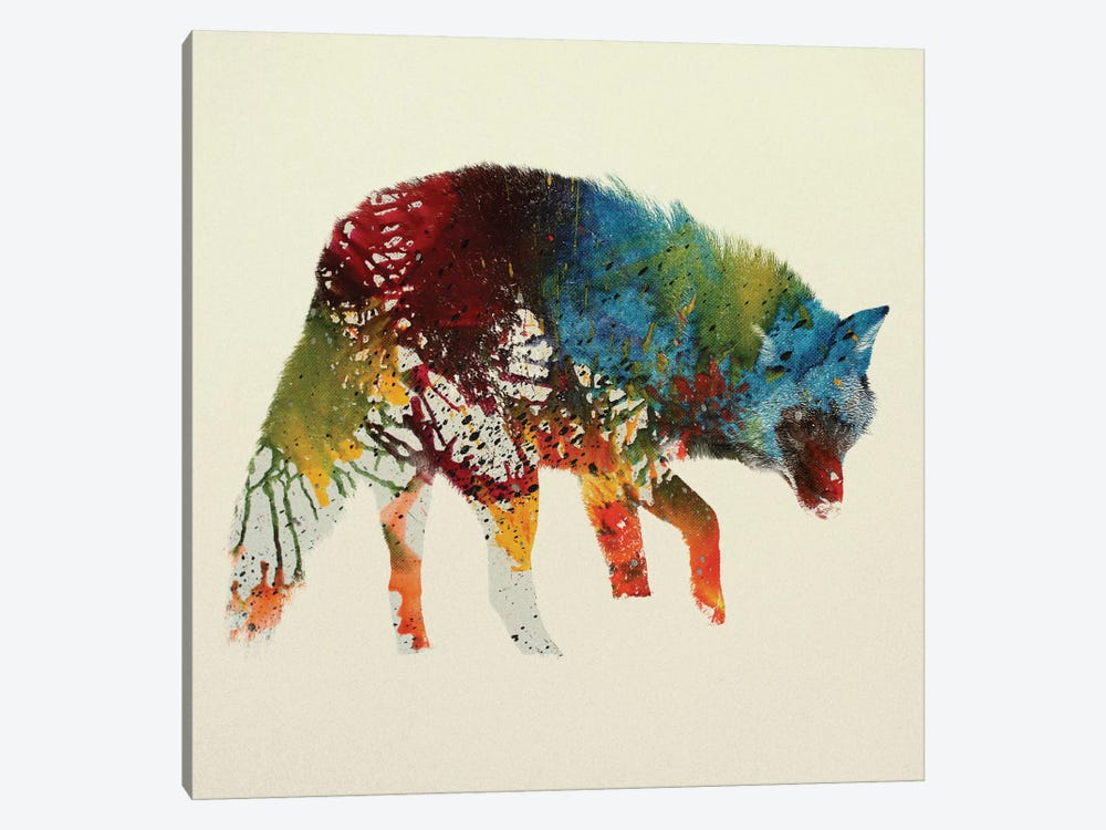 Wolfy by Andreas Lie 1-piece Canvas Artwork