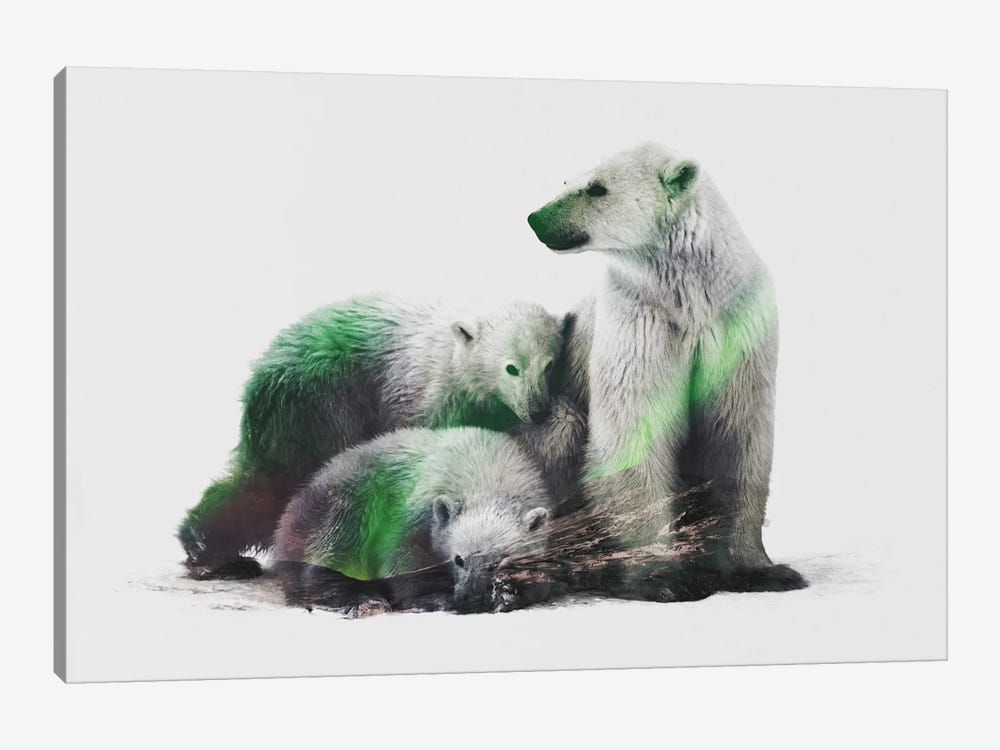 Aurora Borealis Series: Arctic Polar Bear Family by Andreas Lie 1-piece Canvas Print