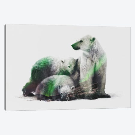 Arctic Polar Bear Family Canvas Print #ALE97} by Andreas Lie Canvas Artwork