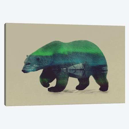 Northern Light for Polar Bear Canvas Print #ALE9} by Andreas Lie Art Print