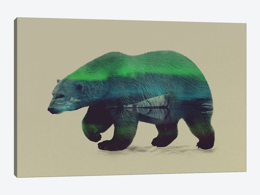 Northern Light for Polar Bear by Andreas Lie 1-piece Canvas Print