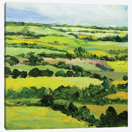 Brightwalton Green Canvas Print #ALF19} by Allan Friedlander Canvas Art