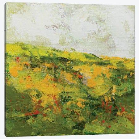 Doncaster Canvas Print #ALF27} by Allan Friedlander Canvas Art
