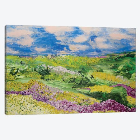 French Valley Canvas Print #ALF30} by Allan Friedlander Canvas Artwork