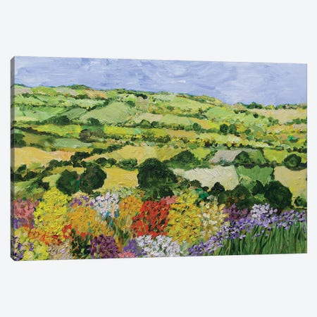 Garden on the Hilltop Canvas Print #ALF31} by Allan Friedlander Canvas Wall Art