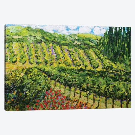 Mountain Vineyard Canvas Print #ALF36} by Allan Friedlander Canvas Art Print