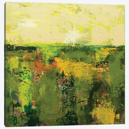 Windermere Canvas Print #ALF45} by Allan Friedlander Canvas Art