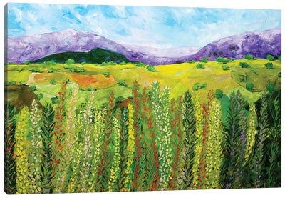 Flower Hedge Canvas Art Print