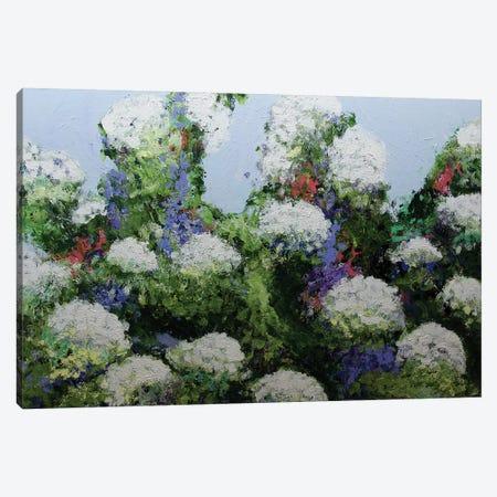 Mum's Garden Canvas Print #ALF68} by Allan Friedlander Canvas Art Print