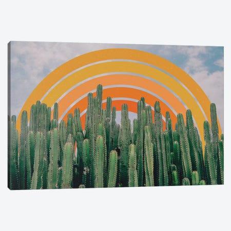 Cactus And Rainbow Canvas Print #ALG14} by Alisa Galitsyna Canvas Art