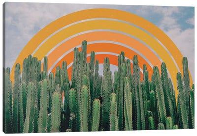 Cactus And Rainbow Canvas Art Print
