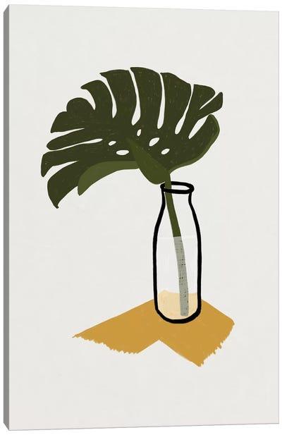 Monstera Deliciosa In A Bottle Canvas Art Print