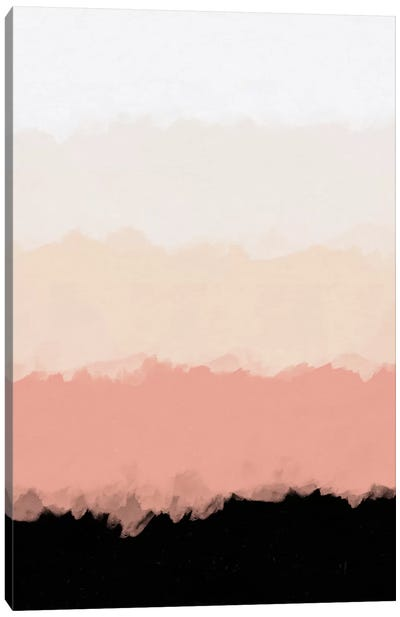 Abstract Rose Color Flora Blush Canvas Art Print