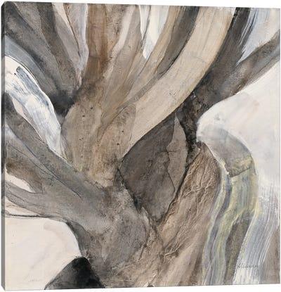 Driftwood I Canvas Art Print