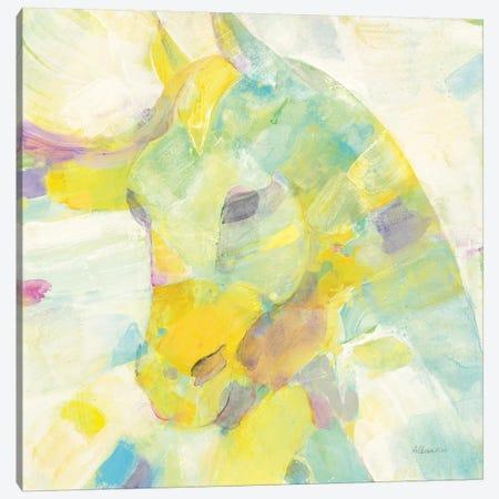 Kaleidoscope Horse III Canvas Print #ALH42} by Albena Hristova Canvas Art Print