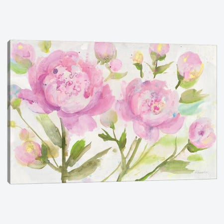 Bright Peonies Canvas Print #ALH57} by Albena Hristova Canvas Art Print