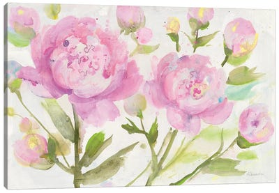 Bright Peonies Canvas Art Print