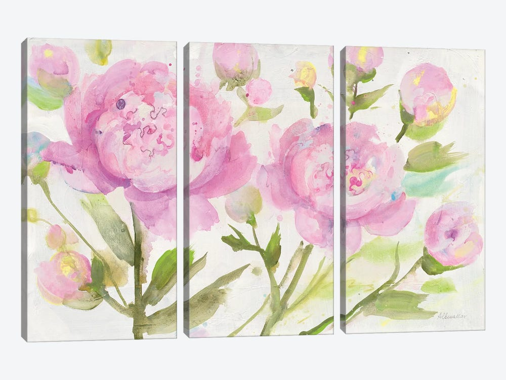 Bright Peonies by Albena Hristova 3-piece Canvas Wall Art