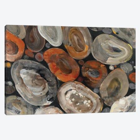 Autumn Rocks Canvas Print #ALH61} by Albena Hristova Canvas Art Print