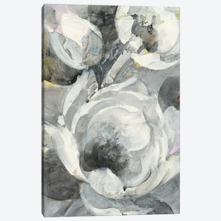 White Delight I Canvas Print #ALH69} by Albena Hristova Art Print