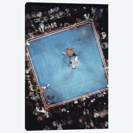 Opponent On One Knee Getting Counted Out, Rumble In The Jungle™ Canvas Print #ALI11} by Muhammad Ali Enterprises Art Print