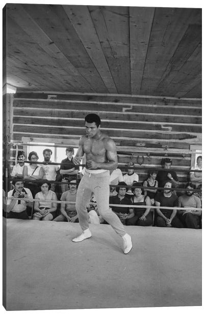 In-Ring Movement At Deer Lake I (Rumble In The Jungle™ Training Camp) Canvas Art Print