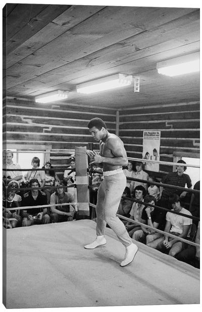 In-Ring Movement At Deer Lake III (Rumble In The Jungle™ Training Camp) Canvas Art Print