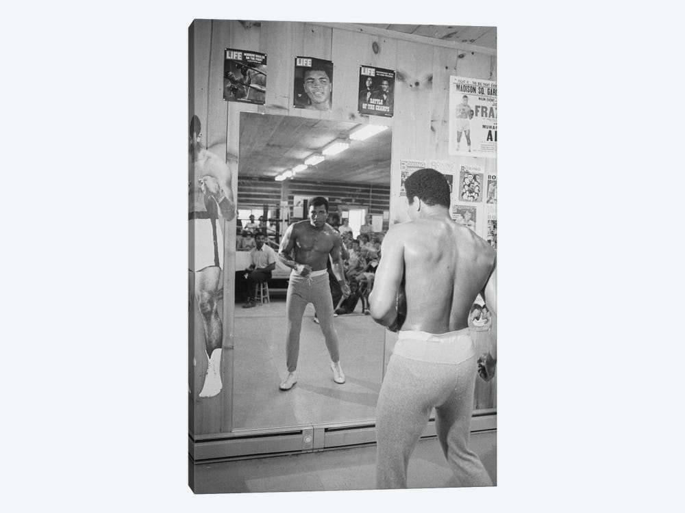 Mirror Training At Deer Lake III by Muhammad Ali Enterprises 1-piece Canvas Wall Art