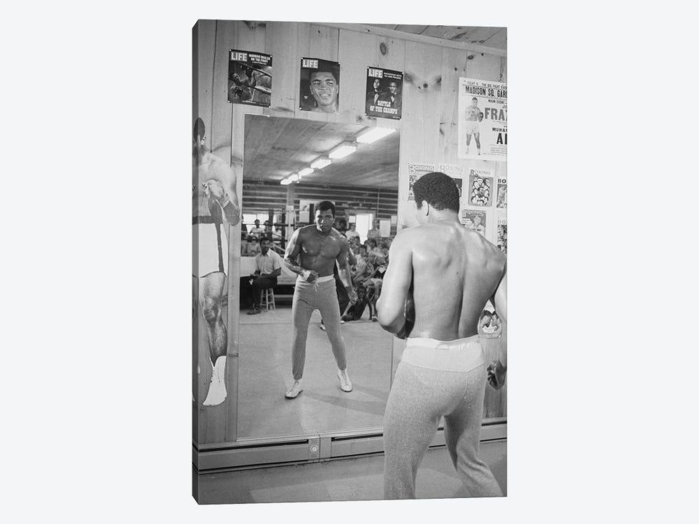Mirror Training At Deer Lake III by Muhammad Ali Enterprises 1-piece Canvas Wall Art