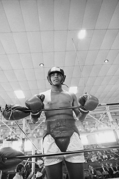 Muhammad Ali In Sparring Gear Art P...   Muhammad Ali Enterprises ...