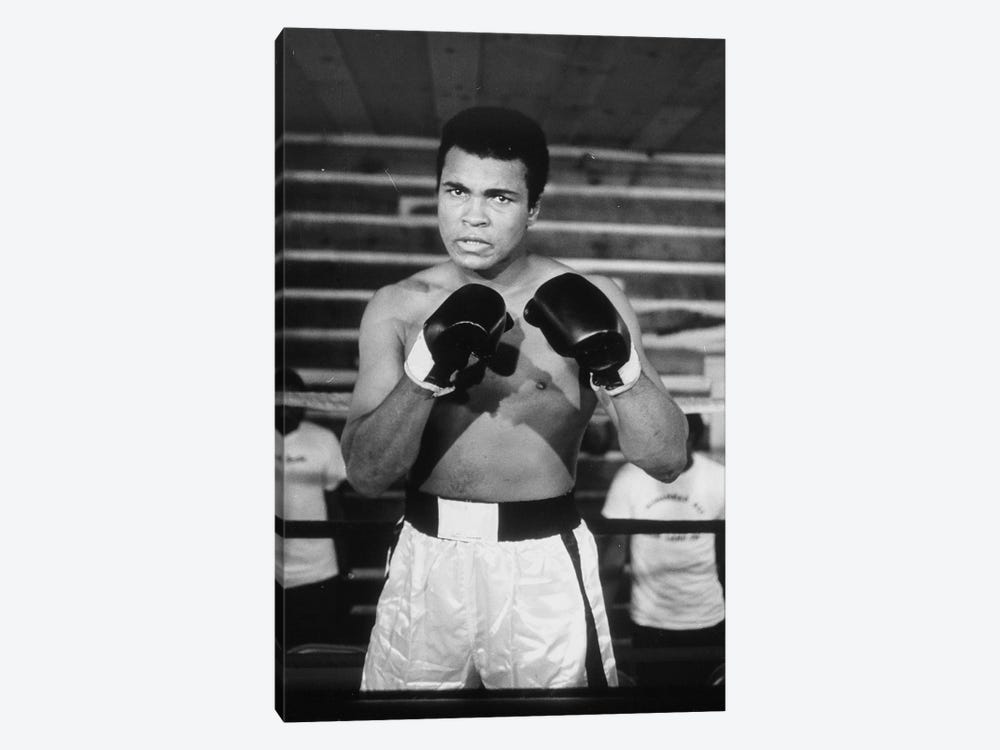 Muhammad Ali With A Fierce Glare While Training by Muhammad Ali Enterprises 1-piece Canvas Artwork