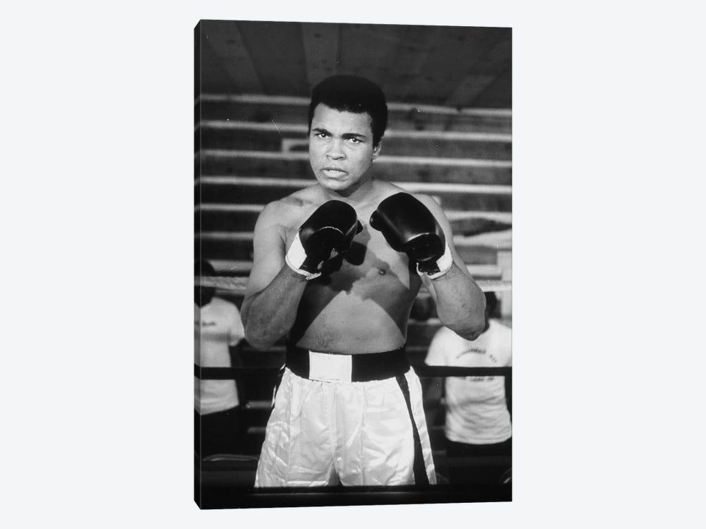 Muhammad Ali With A Fierce Glare While Training by Muhammad Ali Enterprises 1-piece Canvas Artwork