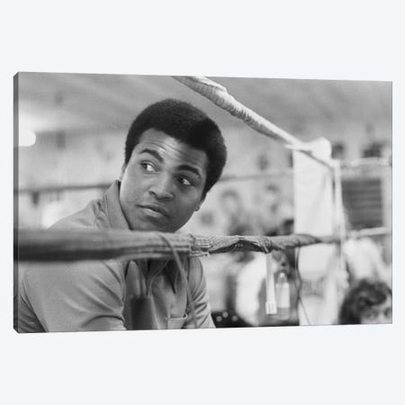 Muhammad Ali With A Raised Brow Canvas Print #ALI57} by Muhammad Ali Enterprises Canvas Art