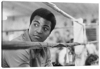 Muhammad Ali With A Raised Brow Canvas Art Print