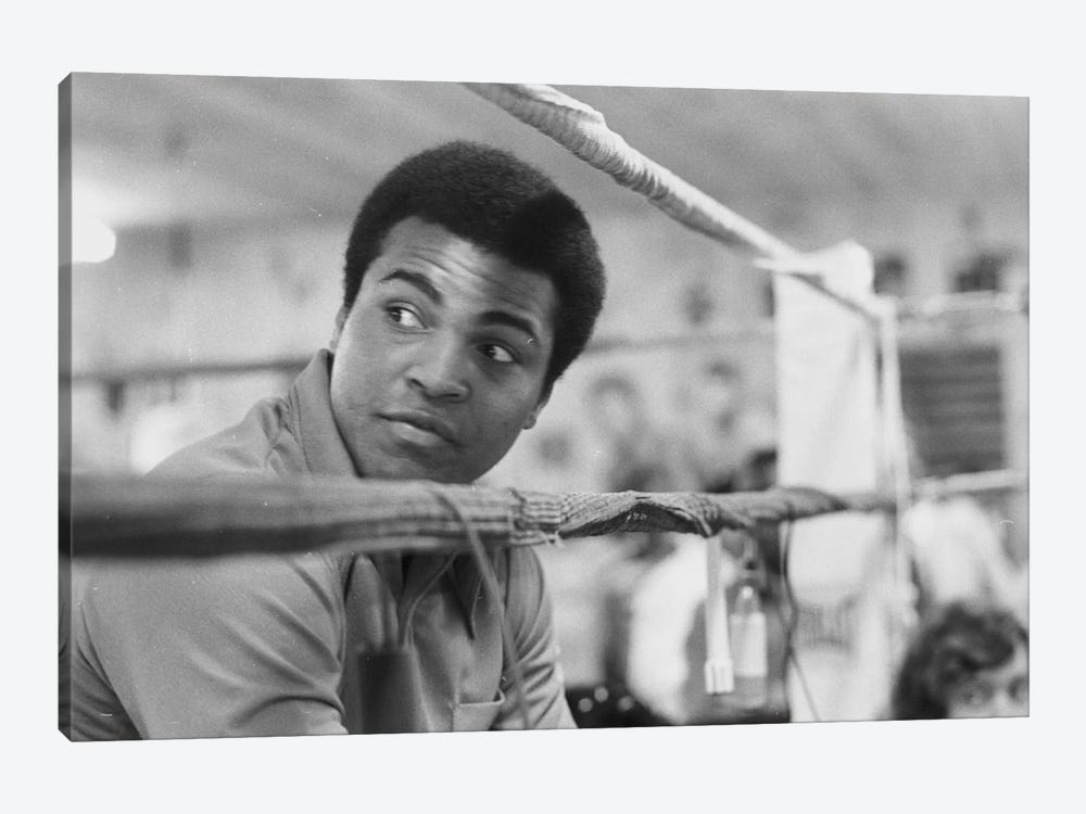 Muhammad Ali With A Raised Brow by Muhammad Ali Enterprises 1-piece Canvas Print
