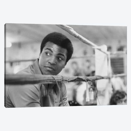 Muhammad Ali With A Raised Brow Canvas Print #ALI57} by Muhammad Ali Enterprises Canvas Art