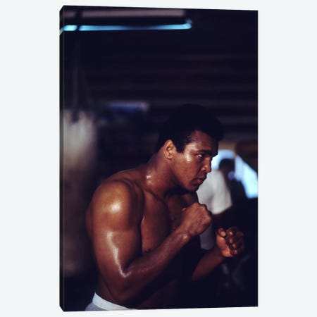 Shadow Boxing Session Canvas Print #ALI78} by Muhammad Ali Enterprises Canvas Art Print