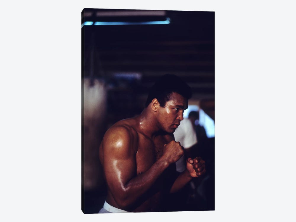 Shadow Boxing Session by Muhammad Ali Enterprises 1-piece Canvas Wall Art