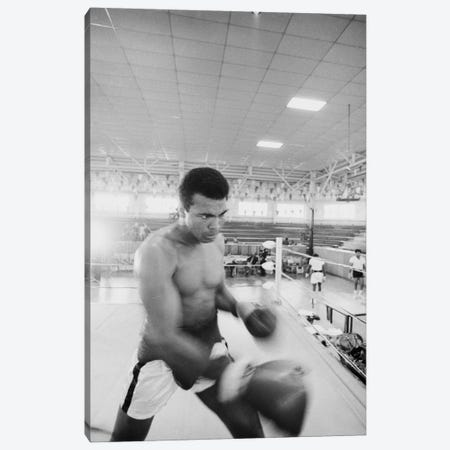 Blurred Motion View Of Muhammad Ali Sparring Canvas Print #ALI9} by Muhammad Ali Enterprises Canvas Art Print