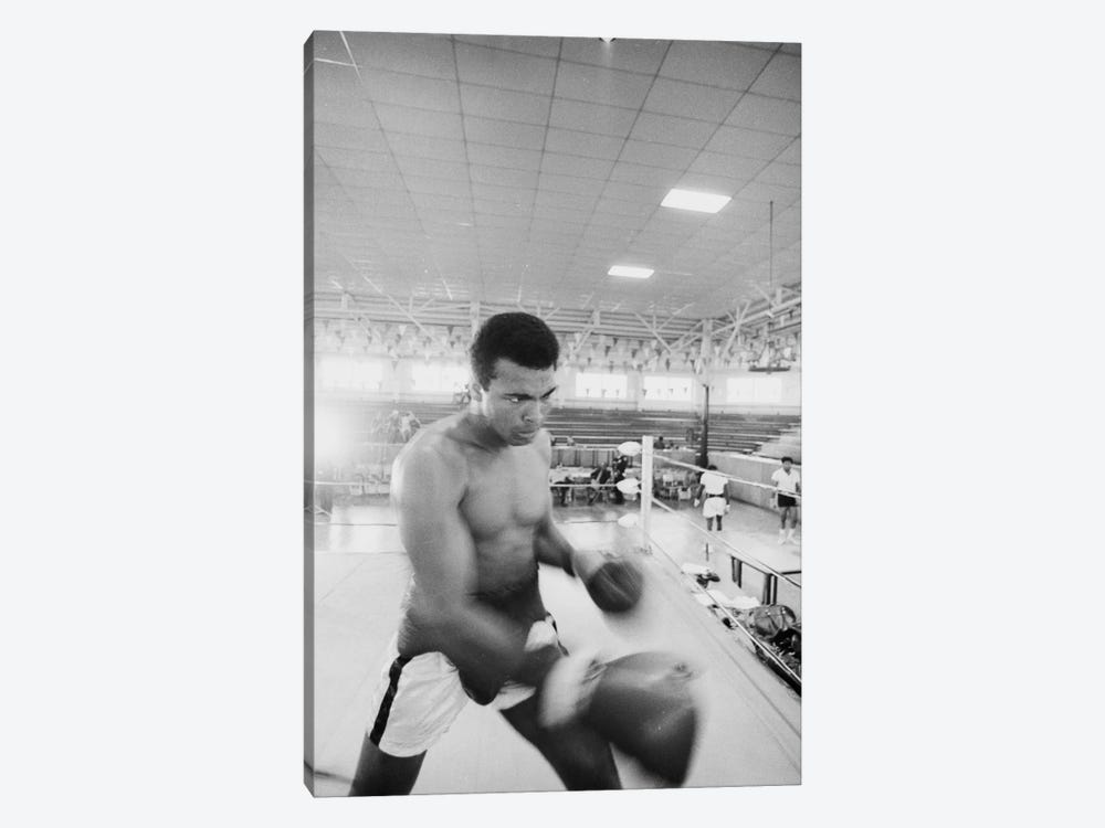Blurred Motion View Of Muhammad Ali Sparring by Muhammad Ali Enterprises 1-piece Canvas Print