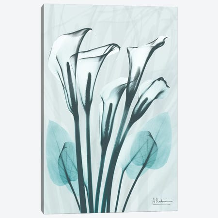 Calla Lily Crystalis I Canvas Print #ALK112} by Albert Koetsier Canvas Art