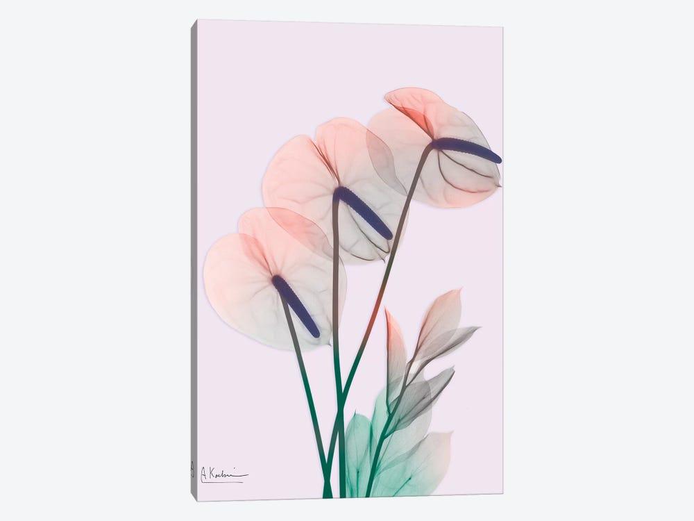 Flamingo Delight III by Albert Koetsier 1-piece Canvas Art