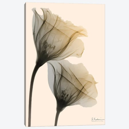 Neutral Lovers I Canvas Print #ALK126} by Albert Koetsier Canvas Art
