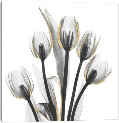Gold Embellished Tulips I Canvas Art Print