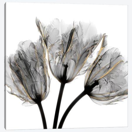 Gold Embellished Tulips III Canvas Print #ALK149} by Albert Koetsier Art Print