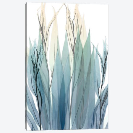 High Degree Canvas Print #ALK152} by Albert Koetsier Canvas Art