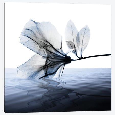Ocean Scent I 3-Piece Canvas #ALK158} by Albert Koetsier Canvas Art