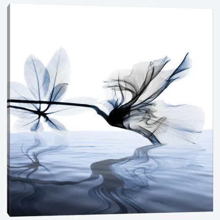 Ocean Scent II 3-Piece Canvas #ALK159} by Albert Koetsier Canvas Wall Art
